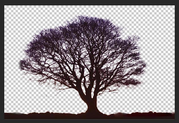 دو تکنیک جدا کردن تصویر از پس زمینه در فتوشاپ