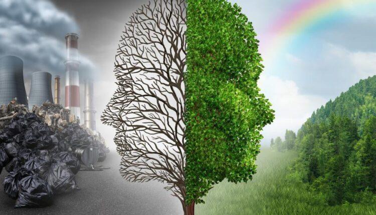 تصاویر استوک محیط زیست
