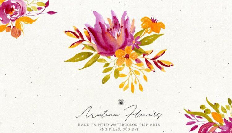 تصاویر PNG گل های آبرنگی