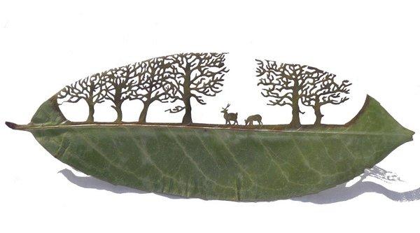 لرنزو منوئل دران