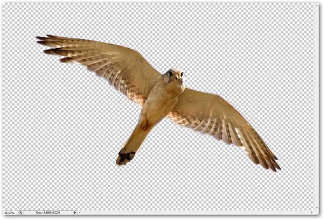 جدا کردن تصویر از پس زمینه در فتوشاپ