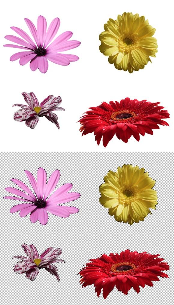 آموزش تایپوگرافی طرح گل در فتوشاپ